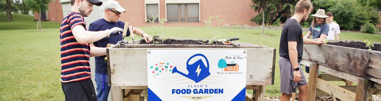 Flash's Food Garden in 2021
