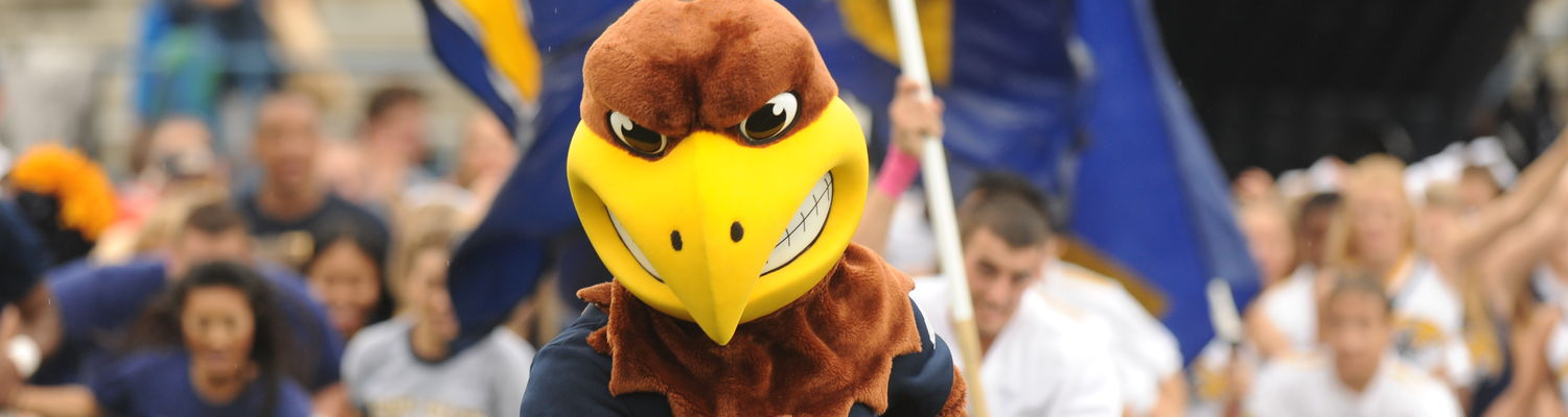 image of Flash the mascot