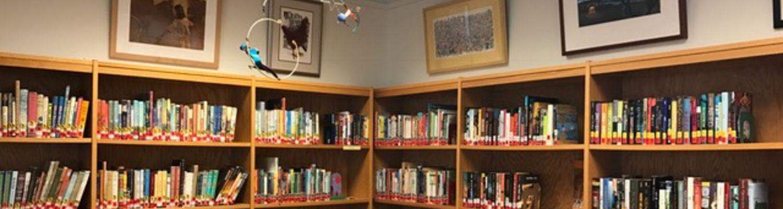 reinberger Shelves