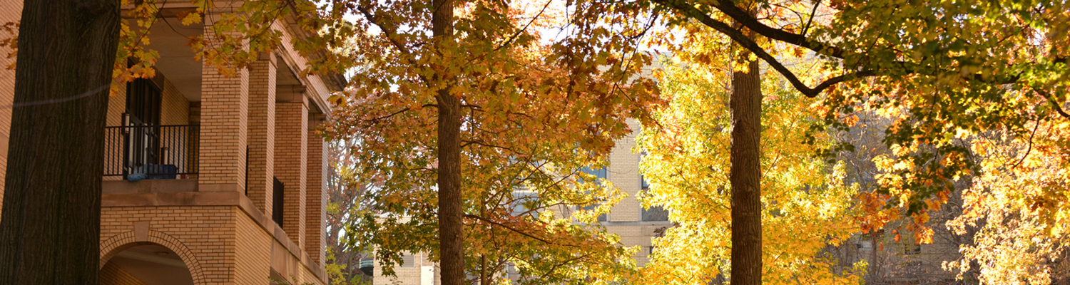 The Four Seasons at Kent State - Fall