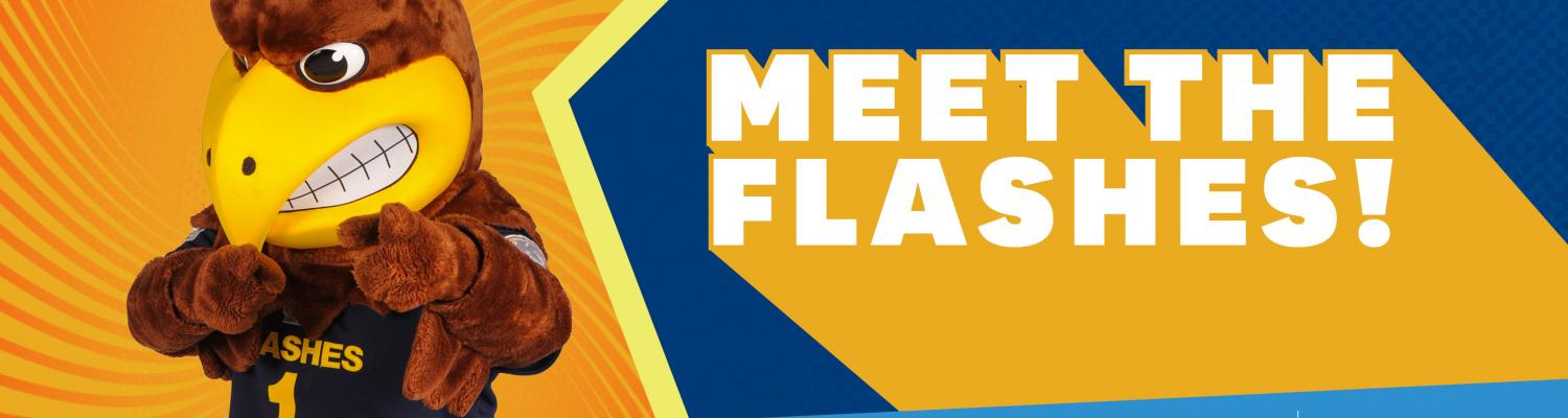 Meet the Flashes