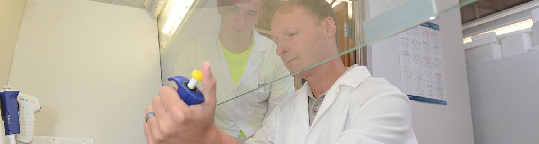 Research at Kent State's biomedical program