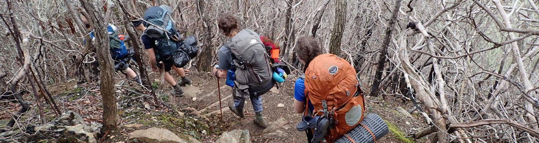 backpackers hiking down trail