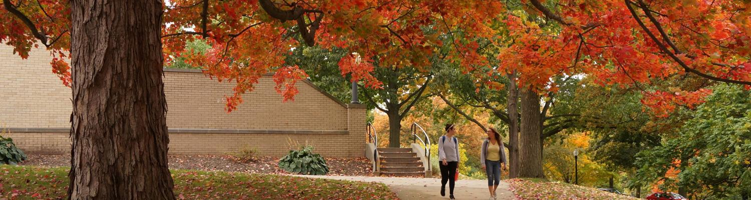 Two students walk back from class under the canopy of a large tree in full fall colors.