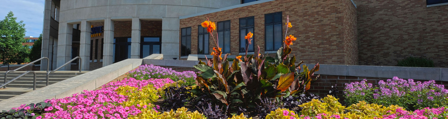 flowers in front of the MACC
