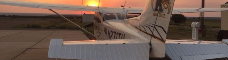 Nikki the Top Hawk at Sunset