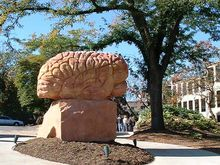 """""""Behind The Brain"""" by Kent State University Emeritus of Art Brinsley Tyrrell is one of a series of sculptures located behind Merrill Hall in the Beck Family Memorial Gardens."""