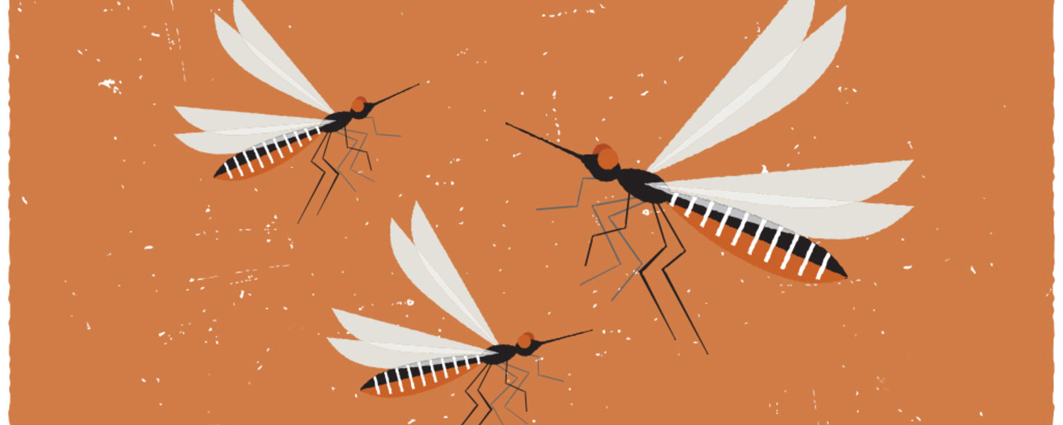 Dangerous Buzz illustrated by Melissa Olson / Kent State Magazine