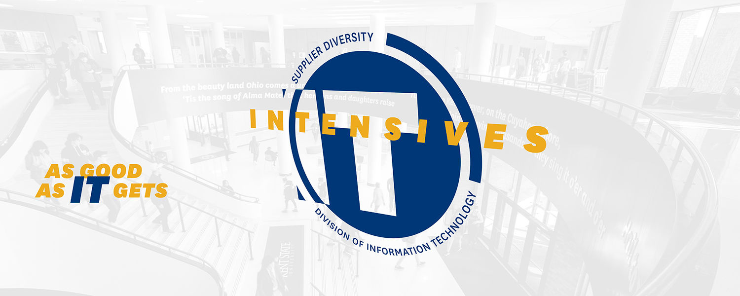 IT Intensives - As good as IT gets