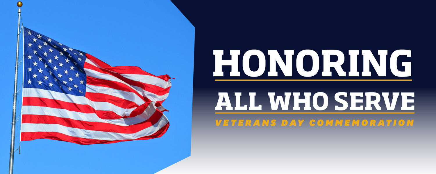Veterans Day promotional graphic