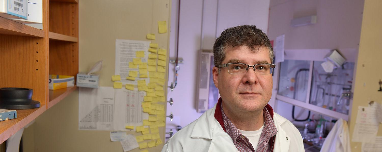 Professor Torsten Hegmann