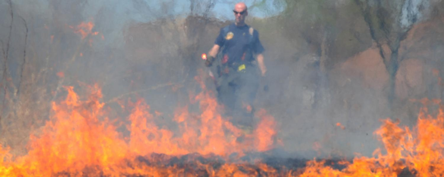 A city of Kent firefighter lights a blaze in the prairie grass during the annual controlled burning of the prairie.