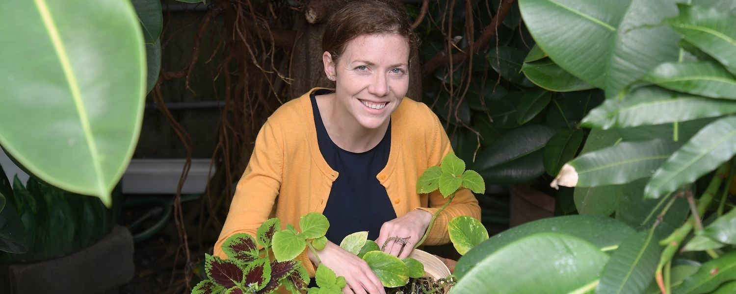 Elizabeth Herndon, Ph.D, assistant professor of geology in Kent State University, received a five-year, $487,000 Faculty Early Career Development (CAREER) Award from the National Science Foundation.