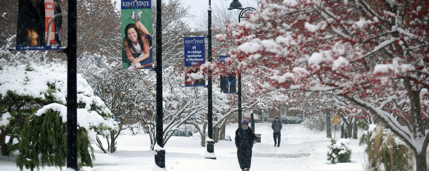 A student makes her way back to a residence hall, from the Student Center, through heavy winter snow.