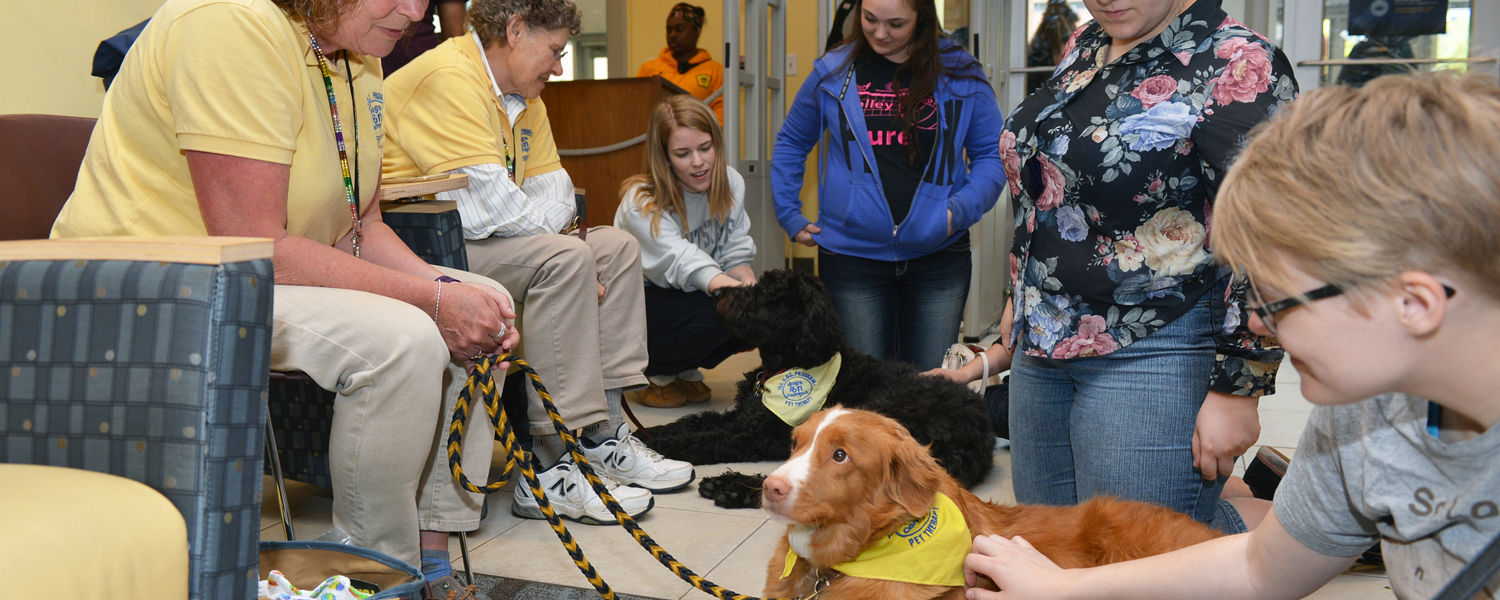 Folly, a Nova Scotia Duck Trolling Retriever, and her human companion, Cindy (left), spent time with Kent State students who stopped by the Stress-Free Zone in the library during the 2016 Spring Semester.