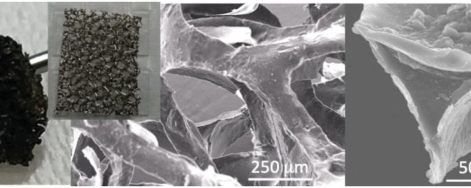 LCE Material. Optical images of LCE, Ni foam, and SEM images of the LCE foam.