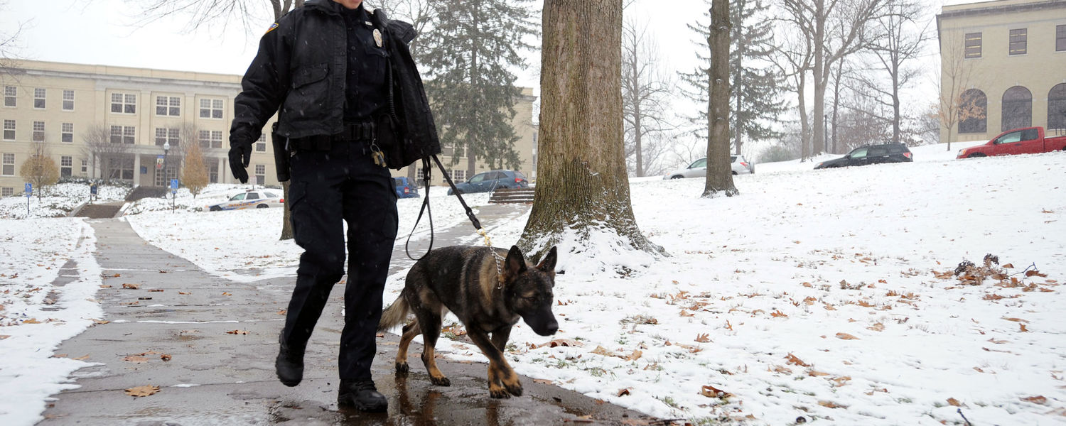Kent State Police Officer Anne Spahr walks on campus with Coco, the department's first police dog.