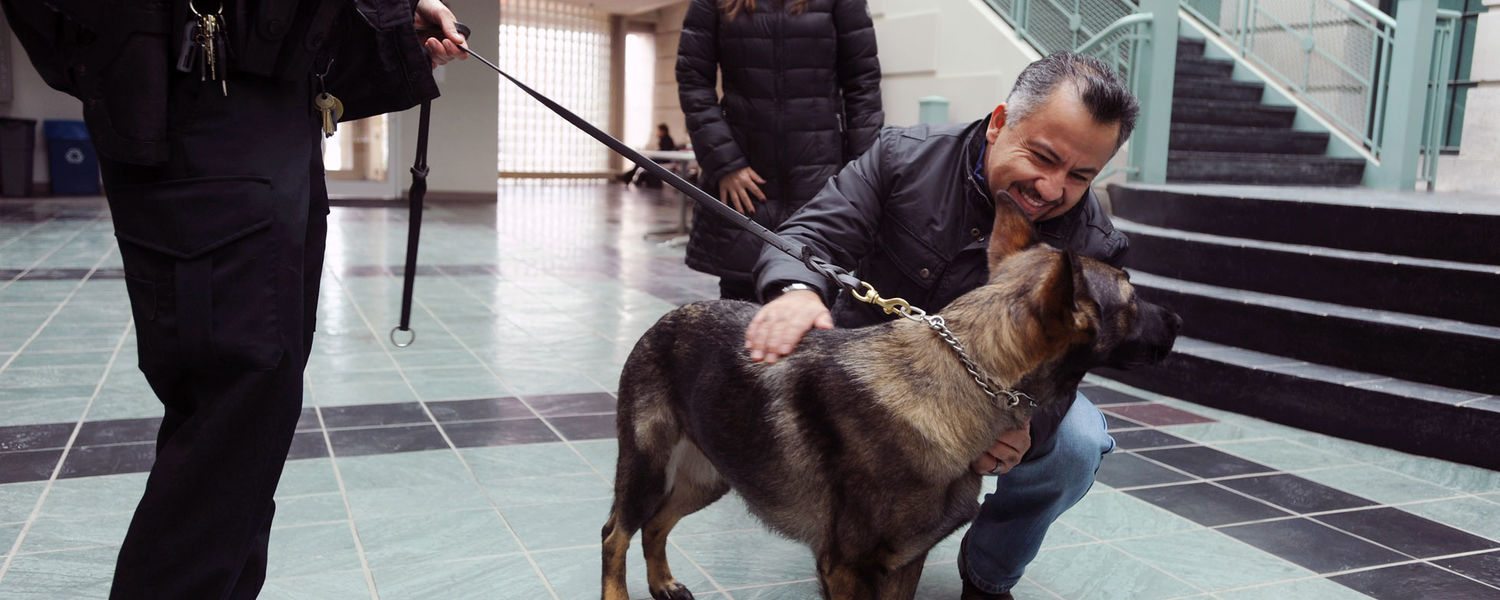 In addition to detecting explosives, conducting searches and tracking, Coco is an ambassador for the Kent State Police Department.