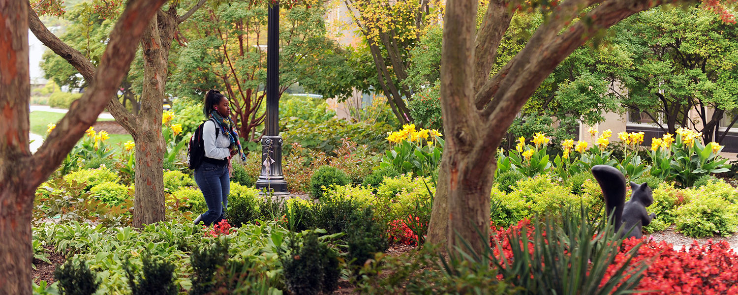 A Kent State student passes through a colorful scene in the Murin Gardens near the library.