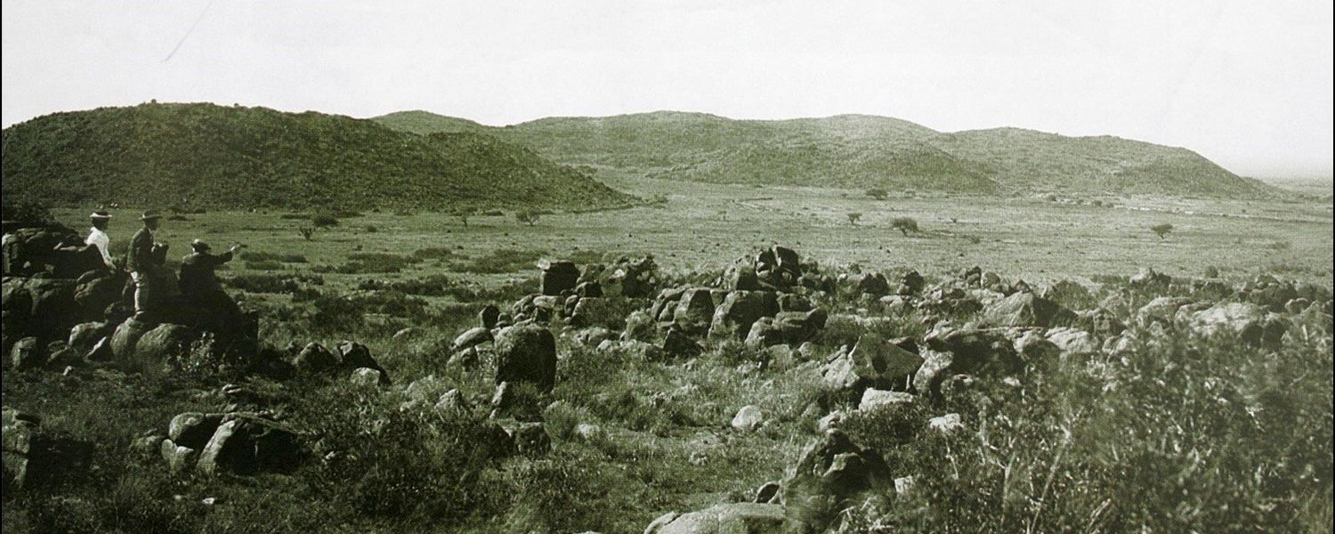 Grassland in Magersfontein (near Kimberley, South Africa), 1900