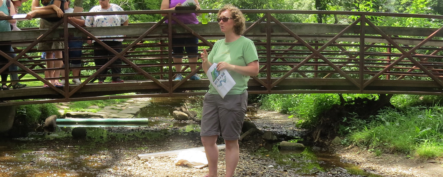 Anne Jefferson, Ph.D. associate professor of geology at Kent State University, works with a group of middle school and high school teachers who are learning about streams. (Photo credit: Laura Sugano)