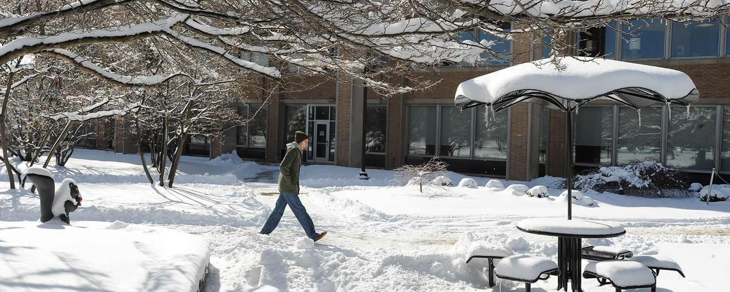 A Kent State student walks through the Murin Gardens by the library on his way to the Kent Student Center.
