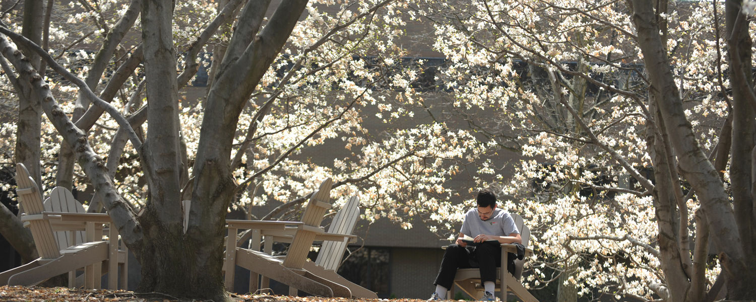 A Kent State student catches up on some reading while enjoying a warm spring day behind Henderson Hall.