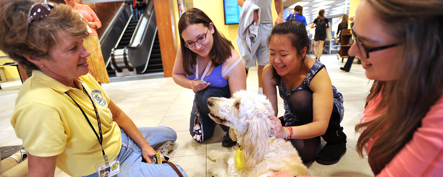 Kent State students gather around to pet a dog during the Stress-Free Zone event held in the lobby of the library during finals week.