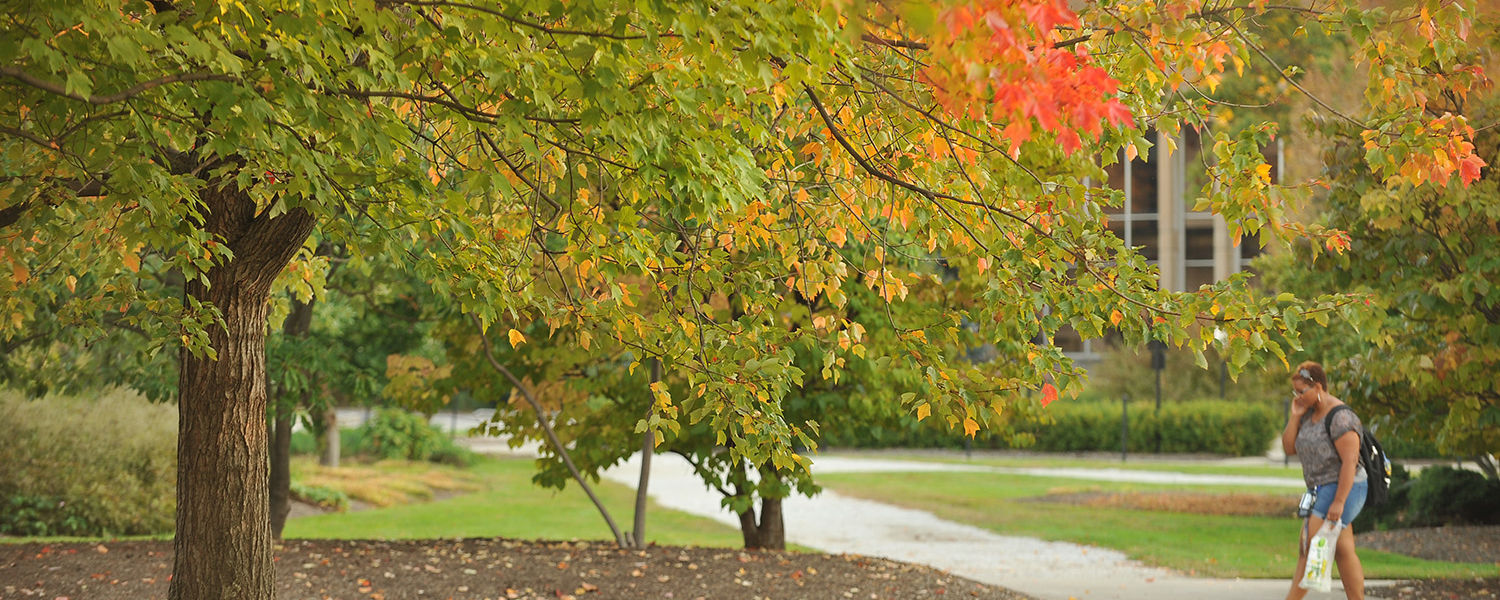A Kent State student walks back to her residence hall and passes by some trees near Cunningham Hall.