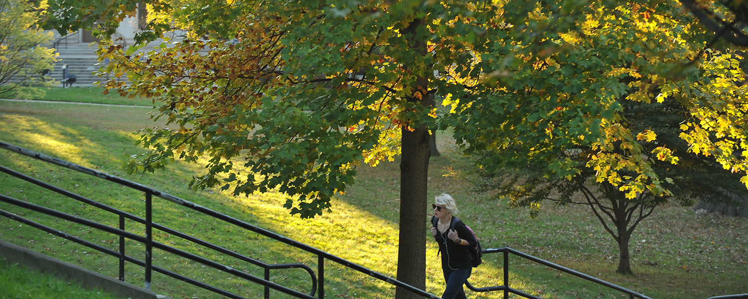 A Kent State student takes the stairs up a hill from Rockwell Hall.