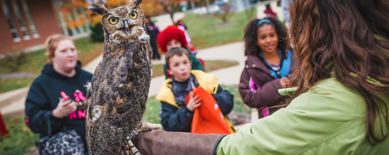 """Kent State Stark is transformed into """"Boo U"""" on Thursday, Oct. 26 for an evening of family-friendly fun."""
