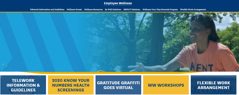 Employee Wellness website