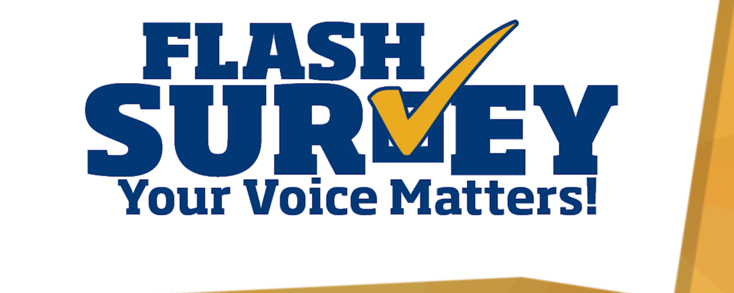 Flash Survey logo
