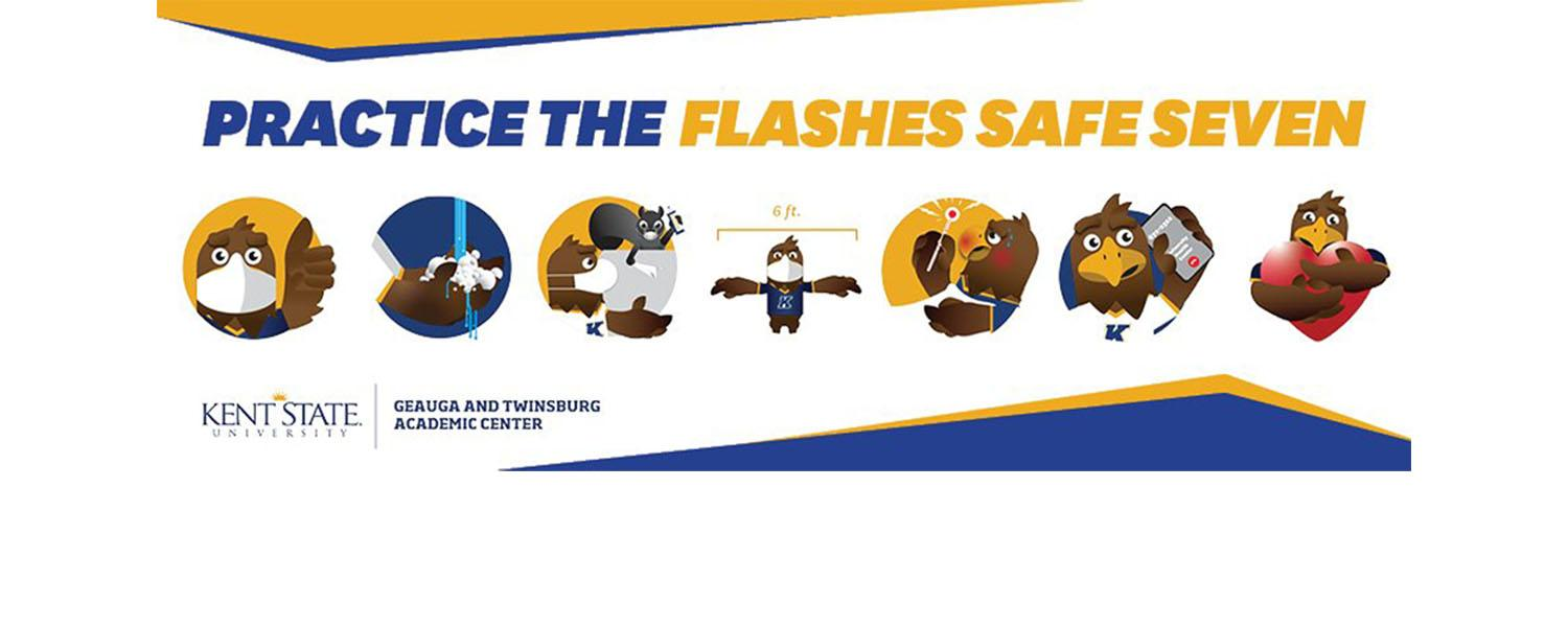 Illustrations of the Flashes Safe Seven