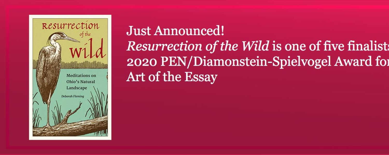 University Press Pen American Award banner