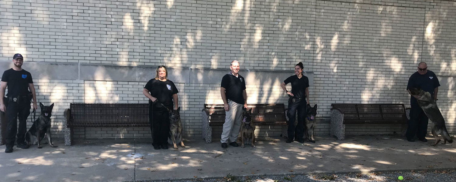 Law enforcement officers and their K9 partners during a training session at the City Center