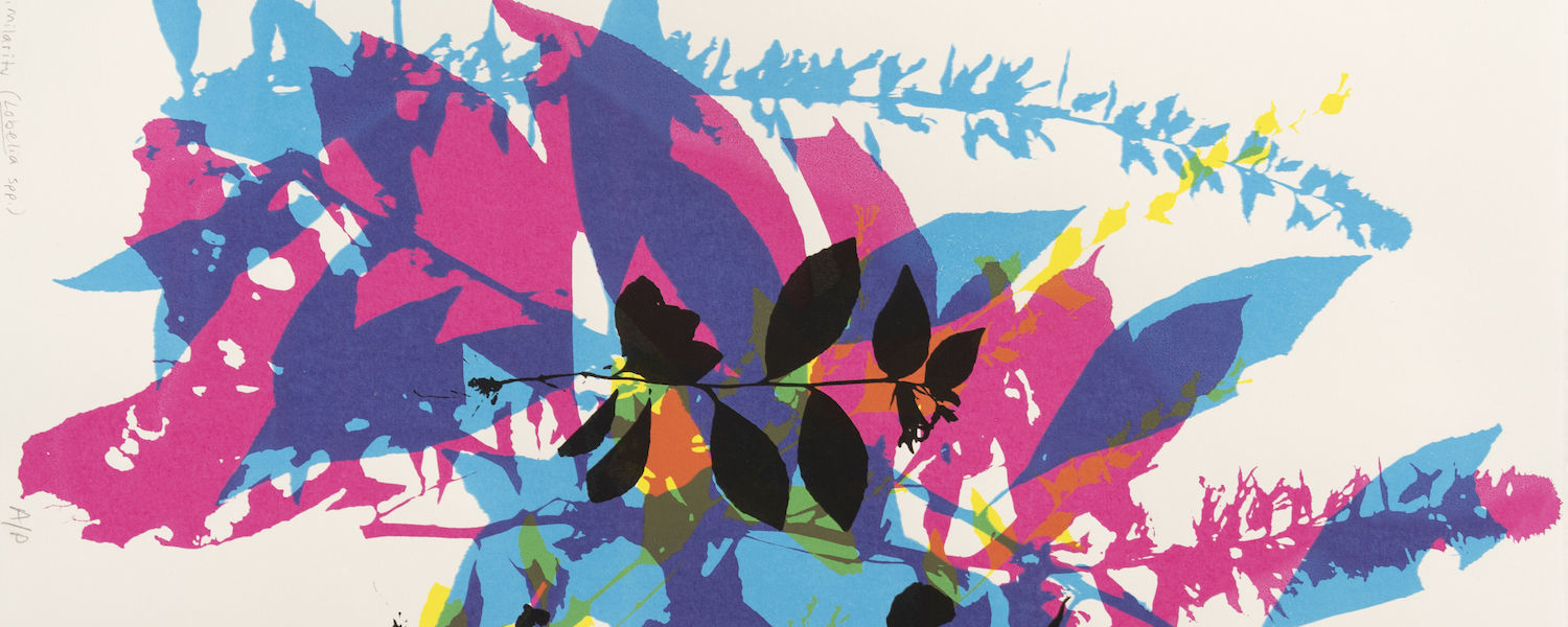 KENT STATE ARTIST, BIOLOGIST UNITE TO DESIGN PRINT FOR NATIONAL PROJECT