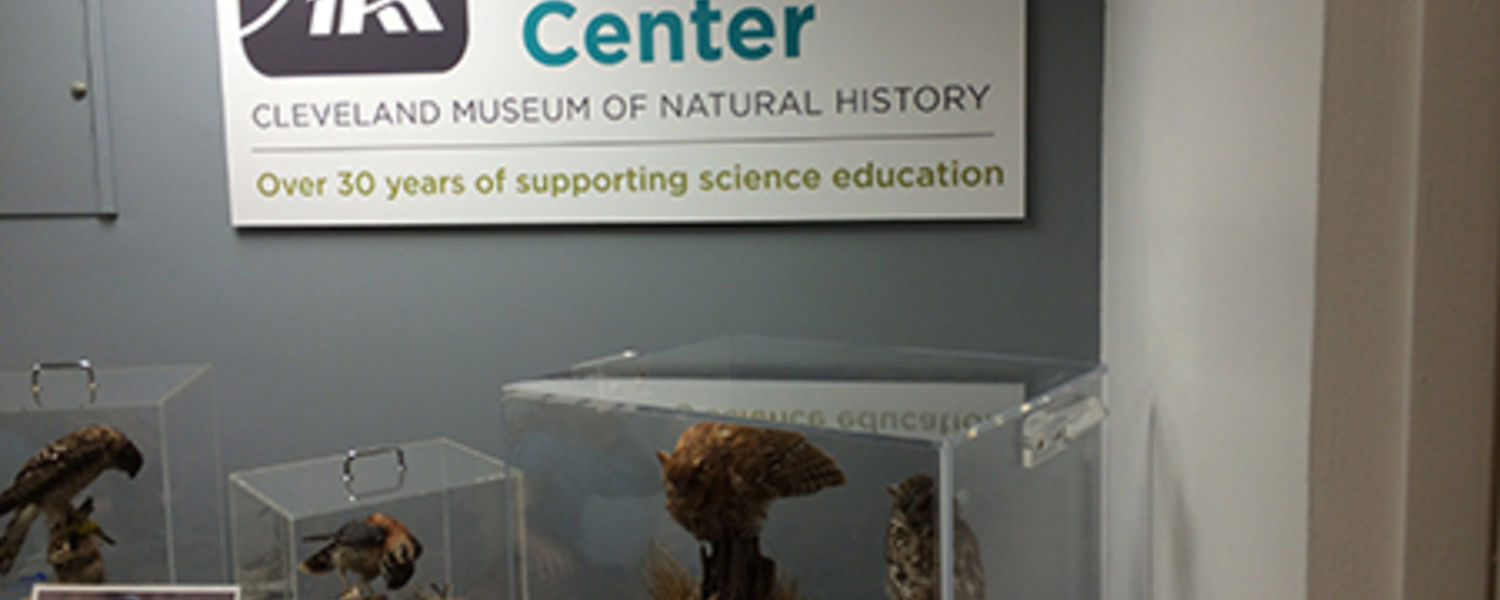 Kent State students visited the Cleveland Museum of Natural History and explored its Educator Resource Center.