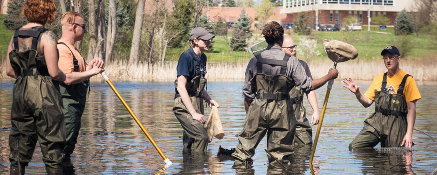 Kent State Stark students conduct research in the water retention study pond on campus.