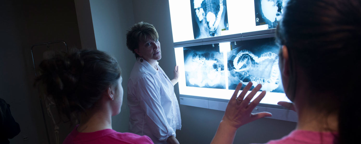 Discover if a Career in Radiology is for You!