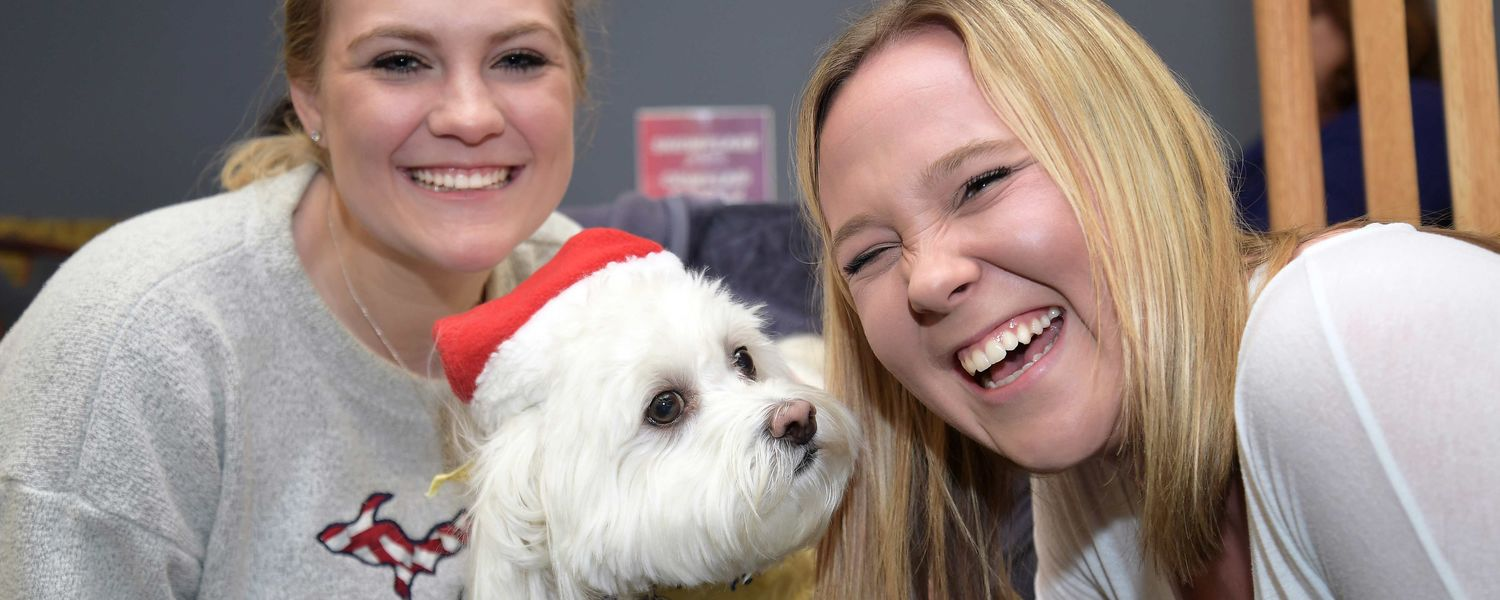 Oliver, a loving Havanese, brings smiles to the faces of two Kent State students during the fall 2017 Stress-Free Zone in the library.