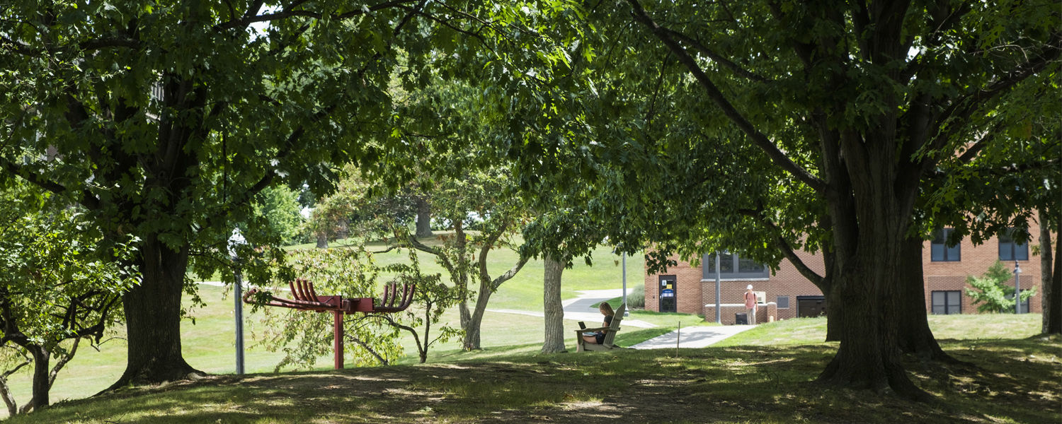 Kent State has been awarded the Tree Campus USA recognition for the 12th consecutive year