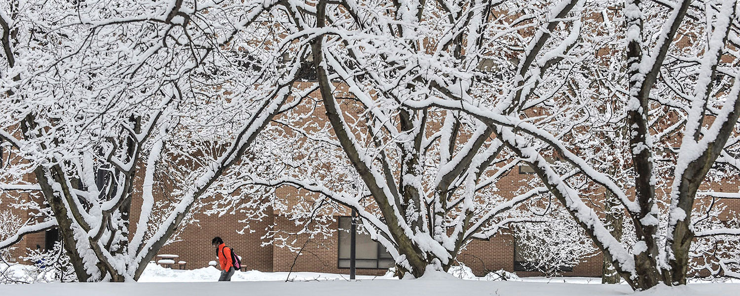 A Kent State student walks among the snow-covered trees behind Henderson Hall.