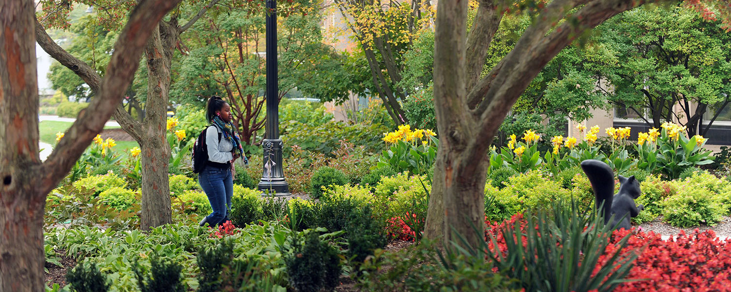 University Is Rooted in Its Commitment to Tree Care | Kent State ...