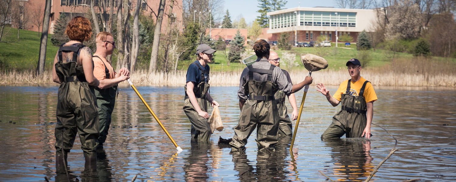 Wired wetlands project at Kent State University at Stark brings high impact to community at relatively low cost.