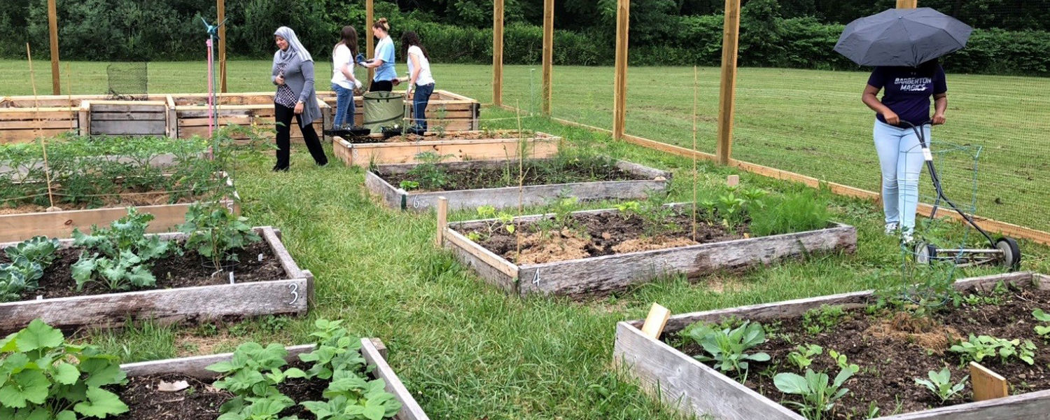 Upward Bound students visiting the garden and help with various tasks