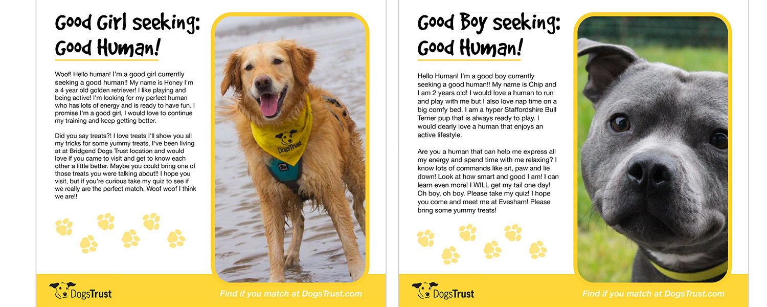 One page of the internationally recognized campaign for Dogs Trust, submitted by Kent State students for the YCN Student Awards