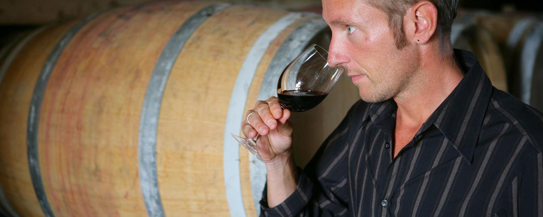 Man tasting wine in a wine cellar