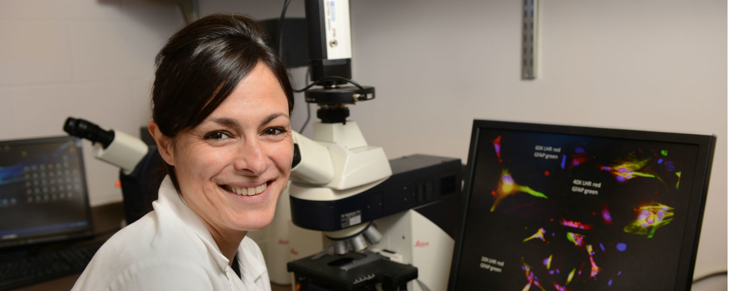 Gemma Casadesus-Smith, Ph.D., an associate professor in Kent State's Department of Biological Sciences, conducts research on Alzheimer's disease.