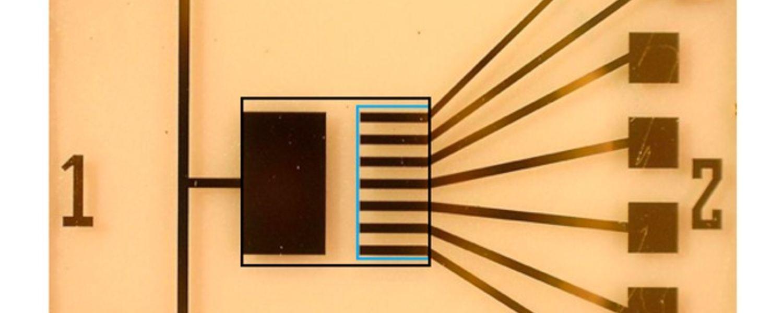 Organic electrochemical transistors-based sensor device developed by Dr. Lussem's lab group at Kent State University